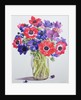 Anemones in a glass jug by Christopher Ryland