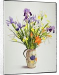Irises and Lilies in a Dutch Jug by Christopher Ryland