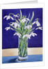 Snowdrops by Christopher Ryland