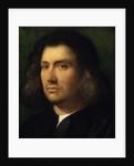 Portrait of a Man, 1506 by Giorgione
