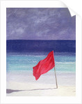 Beach Flag - Storm Warning by Lincoln Seligman