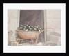 Champagne Wheelbarrow by Lincoln Seligman