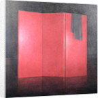 Red Screen by Lincoln Seligman