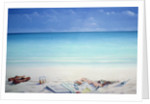 Sun, Sand and Money II by Lincoln Seligman