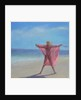 Pink Sari on the Beach by Lincoln Seligman