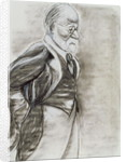 Sigmund Freud, 1998 by Stevie Taylor