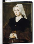 Portrait of a Young Woman, 1541 by Flemish School