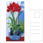 Amaryllis in a Blue Bowl by Joan Thewsey