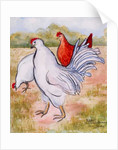 Ralphy,The Cockerel by Joan Thewsey