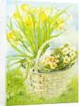 Daffodils and primroses in a basket by Joan Thewsey