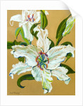 The white lilies by Joan Thewsey