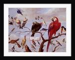 A Chorus of Birds, c.1650-1675 by Jan van the Elder Kessel