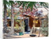 Samba's House by Tilly Willis