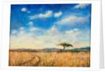 Mara Landscape by Tilly Willis
