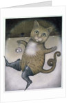 Puss in Boots doing a Somersault by Wayne Anderson