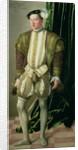 Archduke Ferdinand of Tirol, son of the Holy Roman Emperor Ferdinand I by Jakob Seisenegger