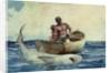 Shark Fishing by Winslow Homer