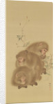 Baboon Family by Japanese School