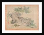 Bamboo and Rocks, 1851 by Tsubaki Chinzan
