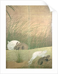 Hares and autumn grasses, c.1700 by Japanese School