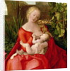 Virgin and Child 'Madonna with the Iris' by Albrecht Durer or Duerer
