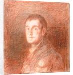 Study for an equestrian portrait of the Duke of Wellington by Francisco Jose de Goya y Lucientes