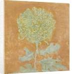 Chrysanthemum, 1906-1942 by Piet Mondrian