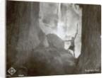 Still from the film Die Nibelungen: Siegfried by German Photographer
