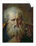 Head of an Old Man by French School