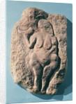 Venus with a horn by Prehistoric
