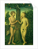 Adam and Eve by Lucas