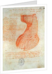Drawing of the Ironwork Casting Mould for the Head of the Sforza Horse, Fol. 57 (recto) by Leonardo da Vinci