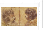 Study of a child's head by Leonardo da Vinci