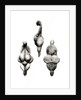 Three views of a 'Venus' statuette by Prehistoric