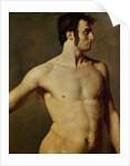 Male Torso by Jean Auguste Dominique Ingres