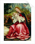 The Virgin and Child by Matthias Grunewald