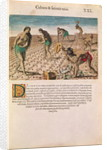 Florida Indians planting maize by Th.