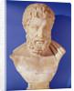 Bust of Metrodorus of Chios by Greek
