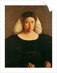 Portrait of a Woman with a White Hairnet by Dosso Dossi