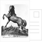 Horse with a harrow, in front of the first Palace of Trocadero constructed for the Universal Exhibition in 1878 by Pierre Louis Rouillard