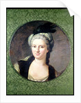 Pauline-Felicite de Nesle Countess of Vintimille by Jacques Andre Joseph Camelot Aved