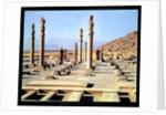 General view of the Apadana by Achaemenid