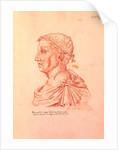 Petrarch by Jacques Le Boucq