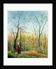 The Walk in the Forest by Henri J.F. Rousseau