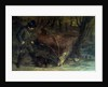 The Death of the Stag by Gustave Courbet