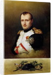 Portrait of Napoleon I by Charles Auguste Steuben