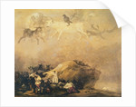 Capriccio Scene: Animals in the Sky by Francisco Jose de Goya y Lucientes