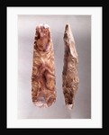 Tools from Campigny, 6000-2000 BC by Prehistoric
