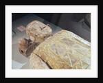 Jade burial suit by Chinese School