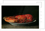 Lobster by Guillaume Romain Fouace